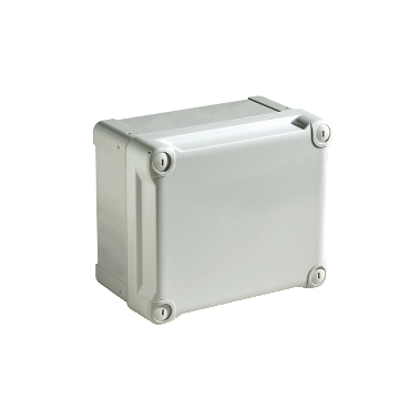 NSYTBS191210H - ABS box IP66 IK07 RAL7035 Int.H175W105D100 Ext.H192W121D105 Opaque cover H40, Schneider Electric