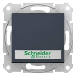 SDN1700470 - Sedna - 1pole pushbutt - 10A 12V~ label, locator light, without frame graphite, Schneider Electric